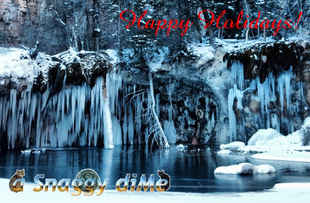 a Snaggy diMe 2014 Holiday Card