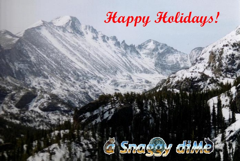 a Snaggy diMe 2007 Holiday Card