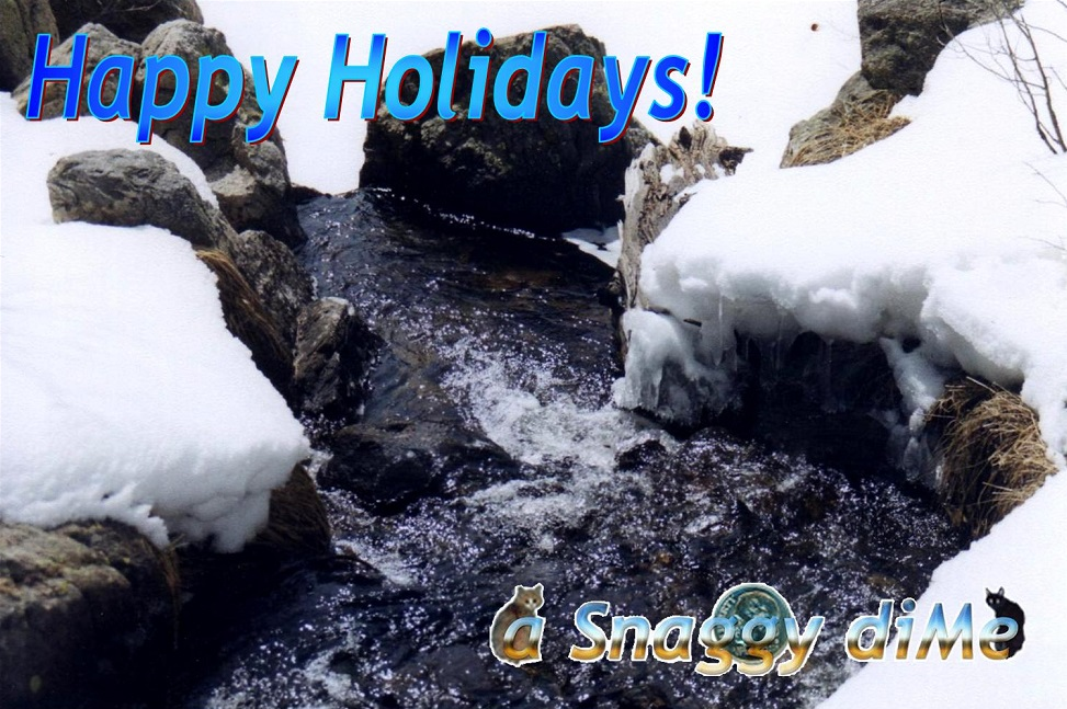 a Snaggy diMe 2008 Holiday Card