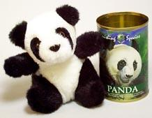Vanishing Species: Panda