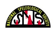 NSS Logo Sticker