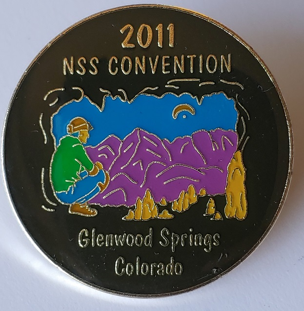 NSS Convention Pin 2011